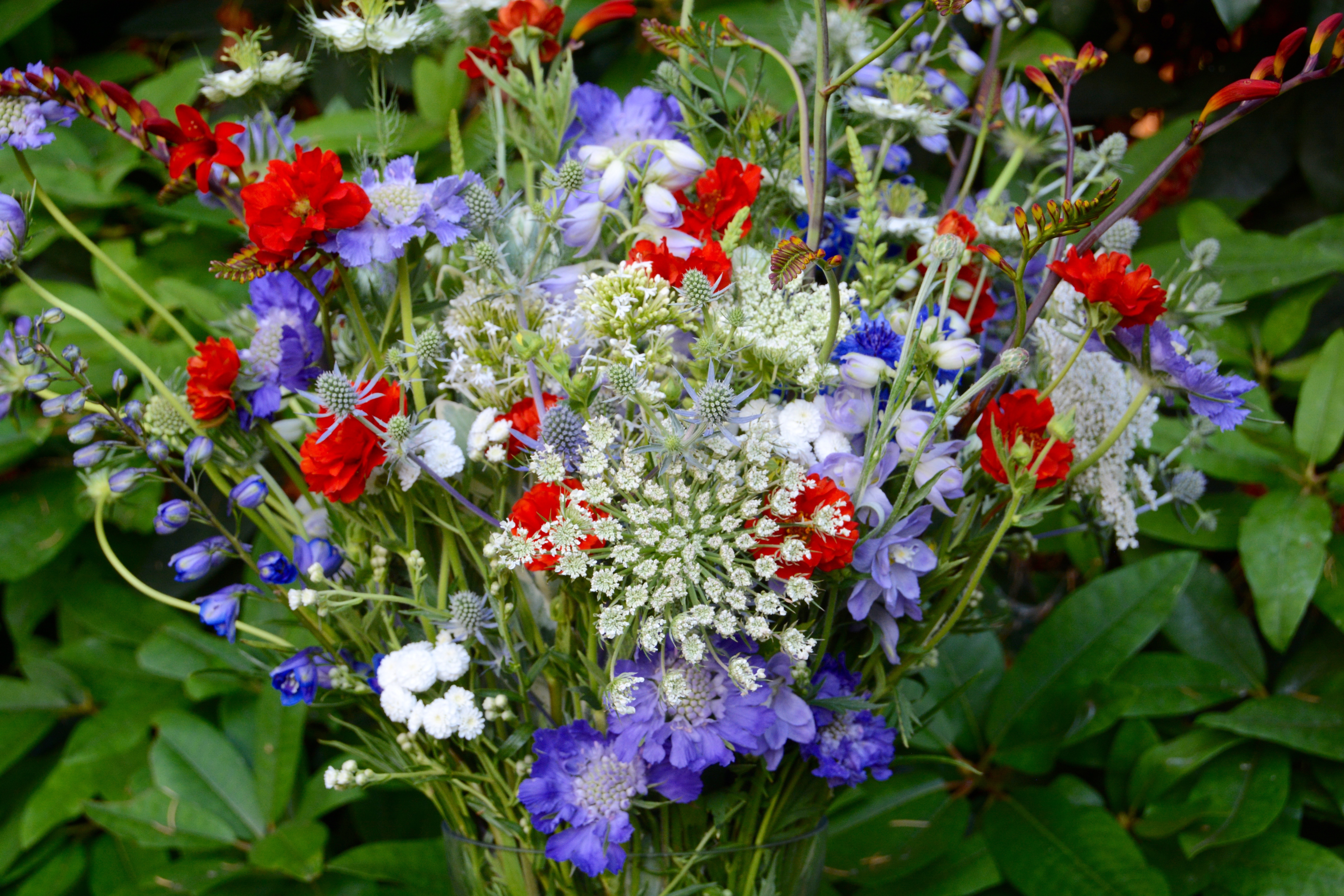 Get ready for red white and blue florals american flowers week more red white and blue florals izmirmasajfo Gallery