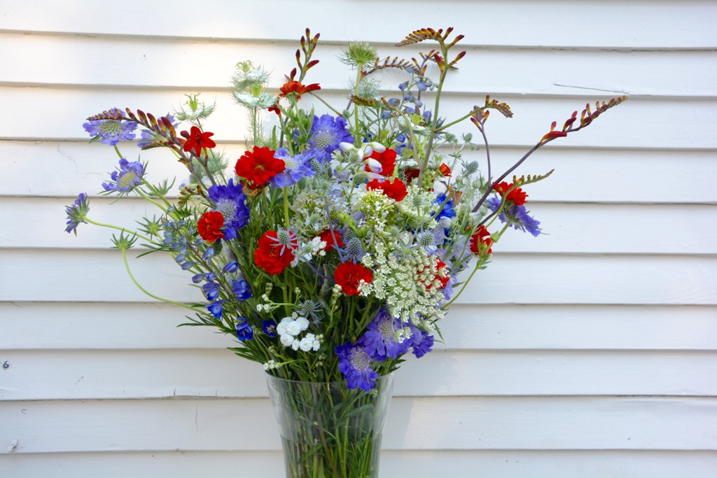 Red-white-blue flowers | american flowers week