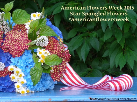 americanflowersweek_striped_ribbon
