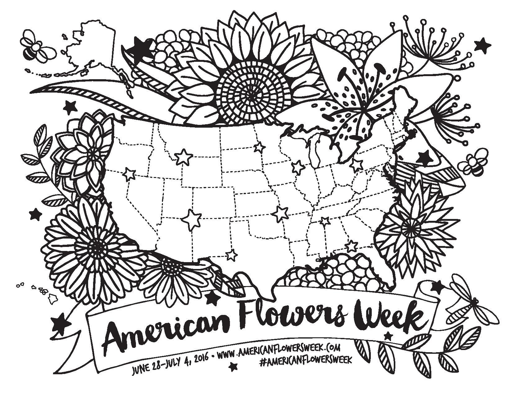USA Floral Coloring Map   american flowers week
