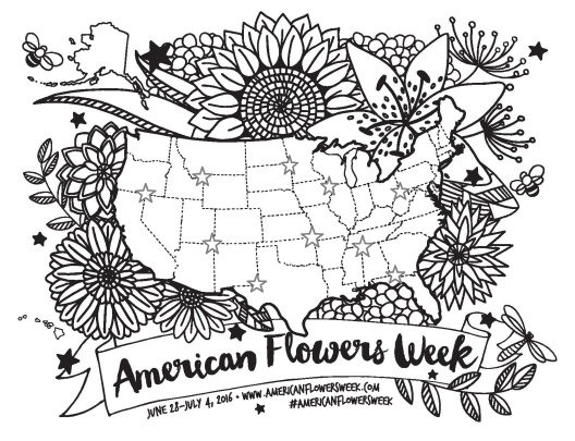 The original drawing of the USA map surrounded by flowers, foliage and beneficial insects for American Flowers Week 2016