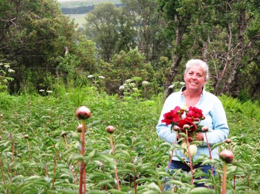 Slow Flowers member Beth Van Sandt of Scenic Place Peonies in Homer, Alaska