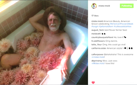 "Slow Flowers member Dennis Westphall, one half of Jello Mold Farm, took inspiration from the film ""American Beauty,"" and posed 'au naturele' in a bath of his Cafe au Lait dahlias. Wow."