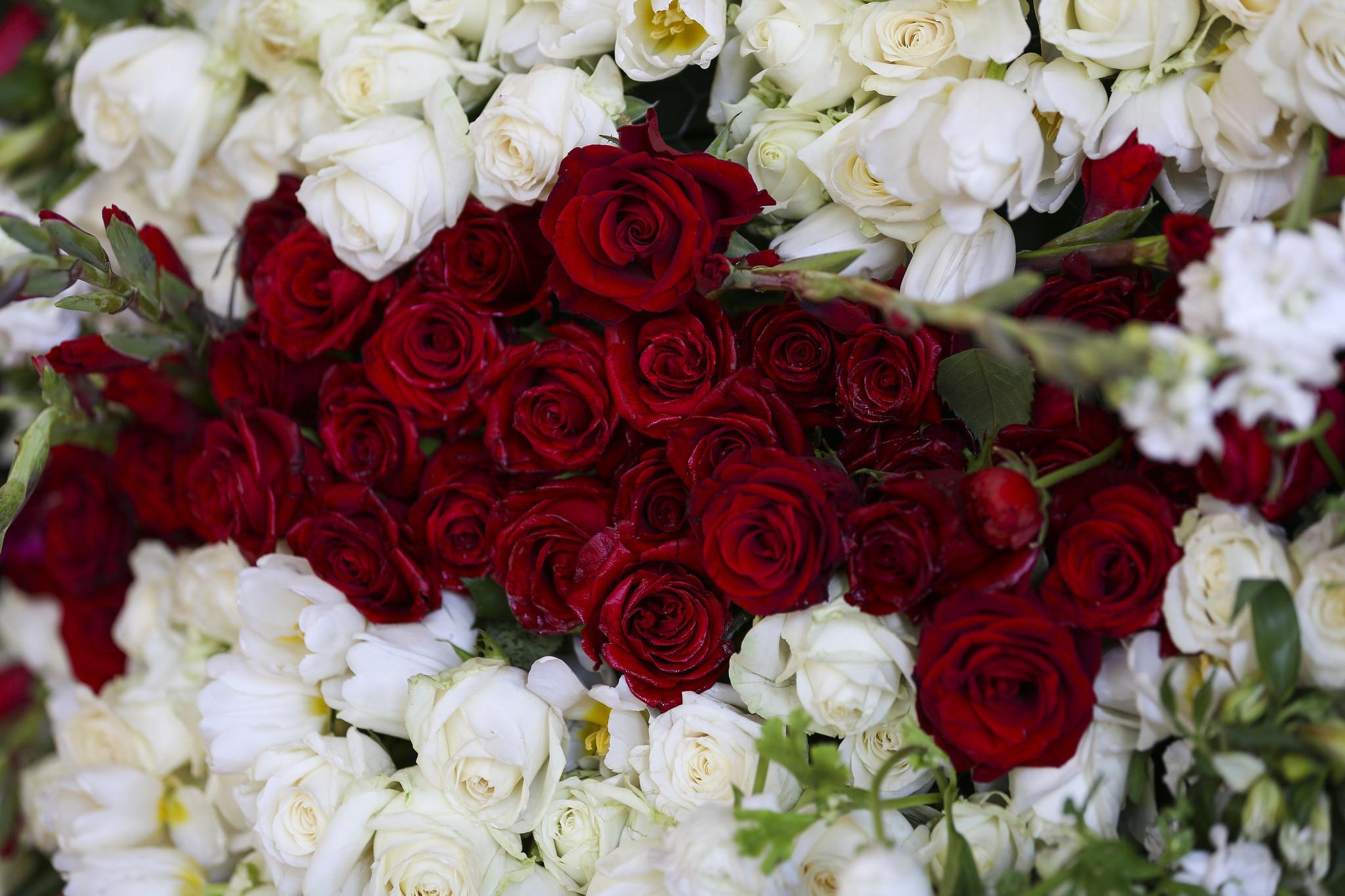 304820268752d6625a5bdk American Flowers Week