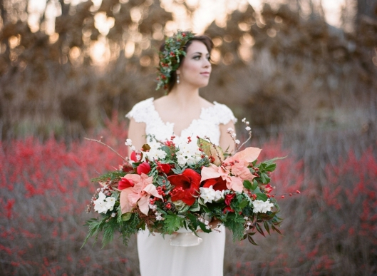 Love the amaryllis + poinsettias + succulents + paperwhites + cedar + ilex for a stunning winter bouquet -- all local!