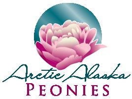 Alaska Arctic Peonies