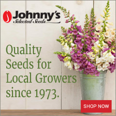 Johnny's Seeds
