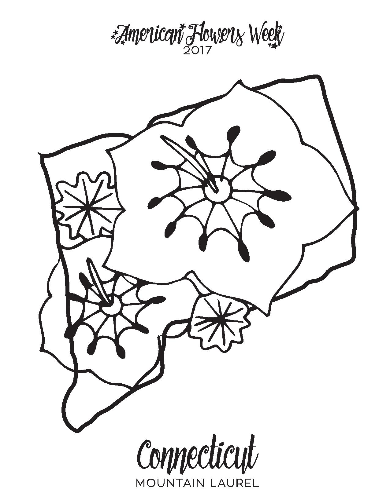 state flower coloring pages. Connecticut Mountain Laurel  PDF 50 State Flowers Free Coloring Pages american flowers week