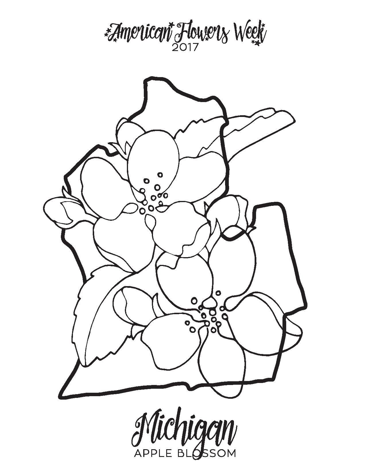 100 apple blossom coloring page let u0027s color 1 shopkins
