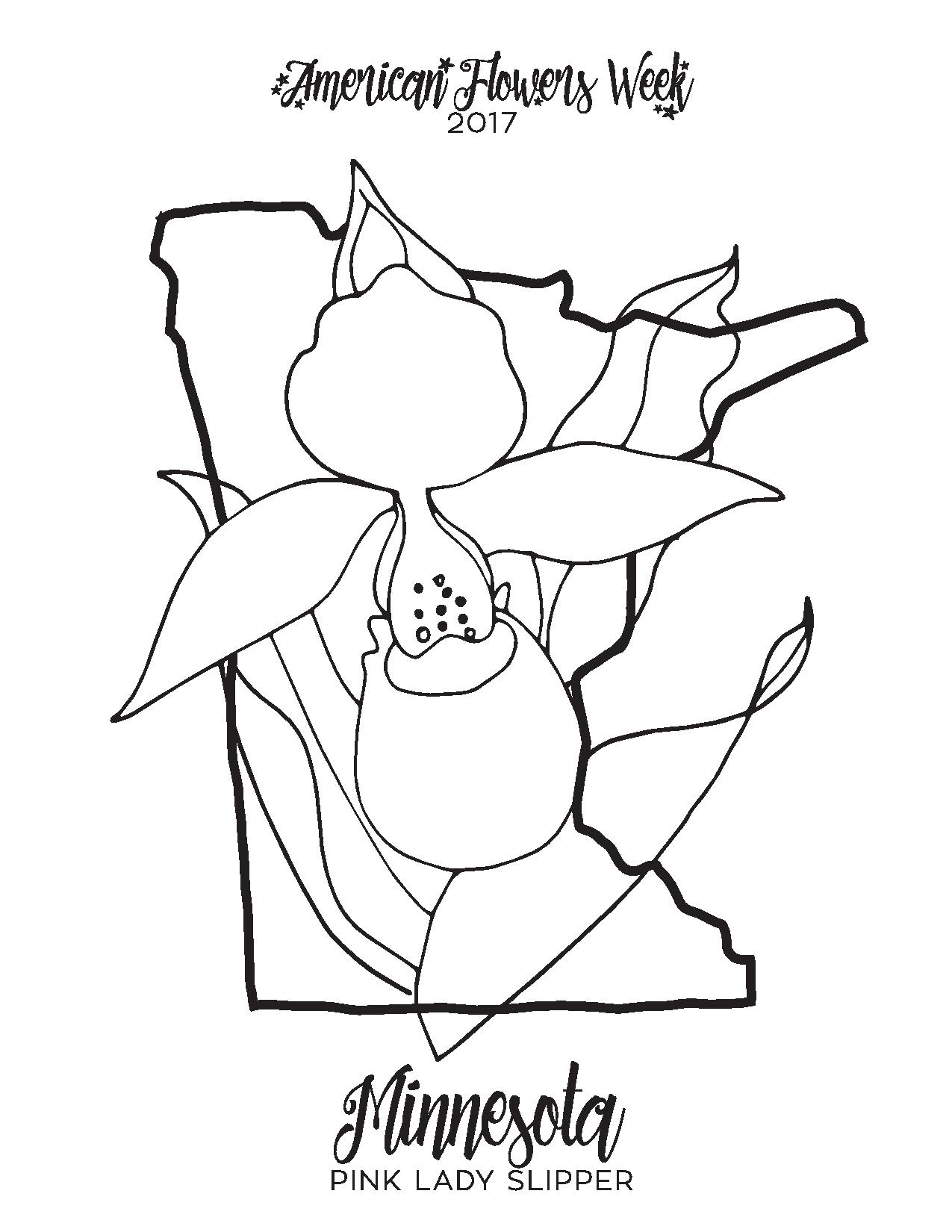50 State Flowers Free Coloring Pages American Flowers Week