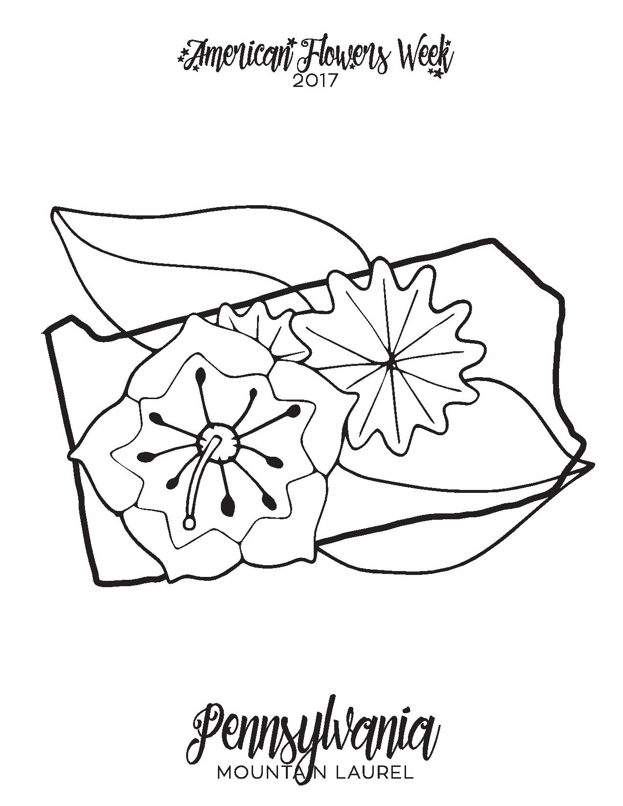 50 State Flowers — Free Coloring Pages