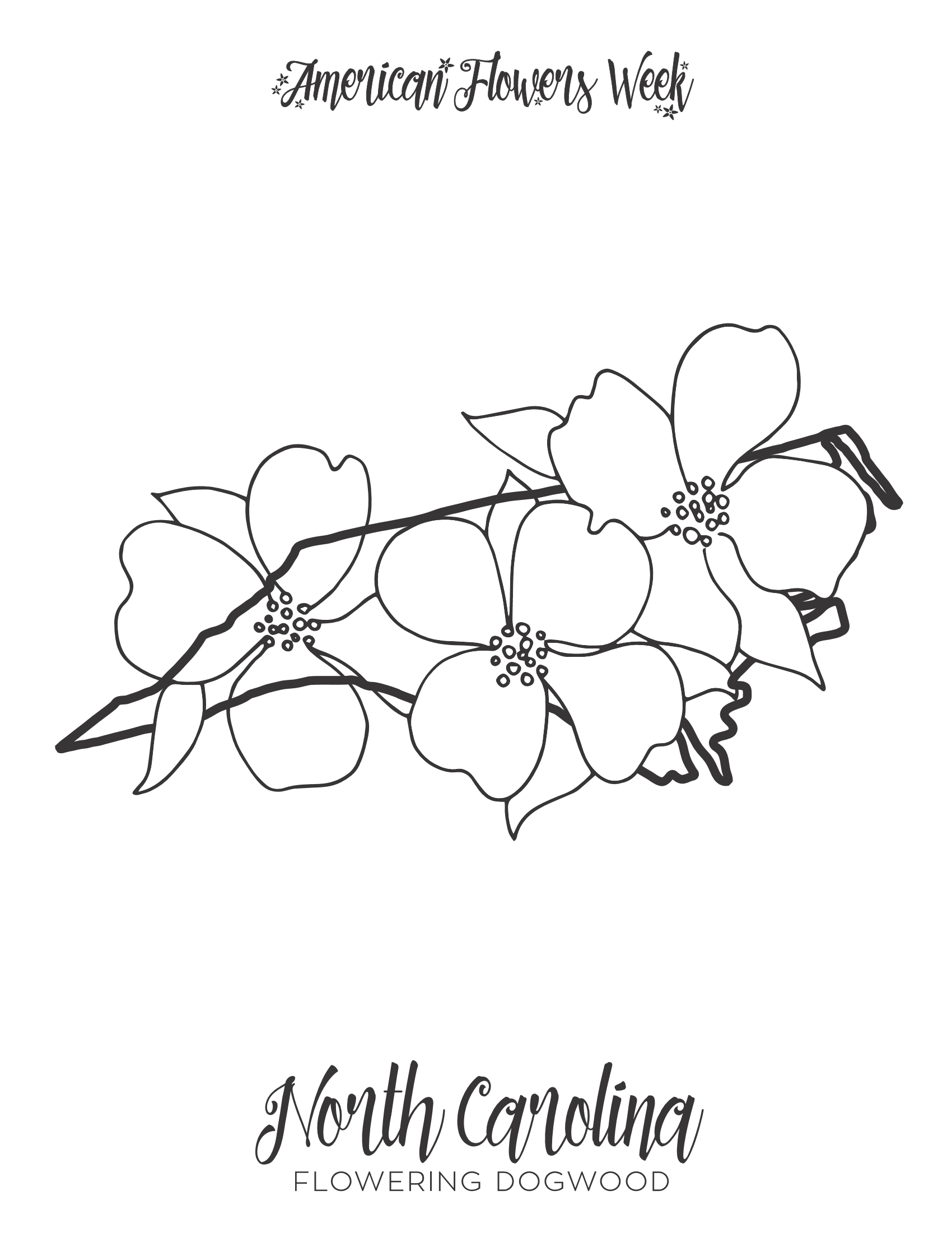 North Carolina Flowering Dogwood PDF