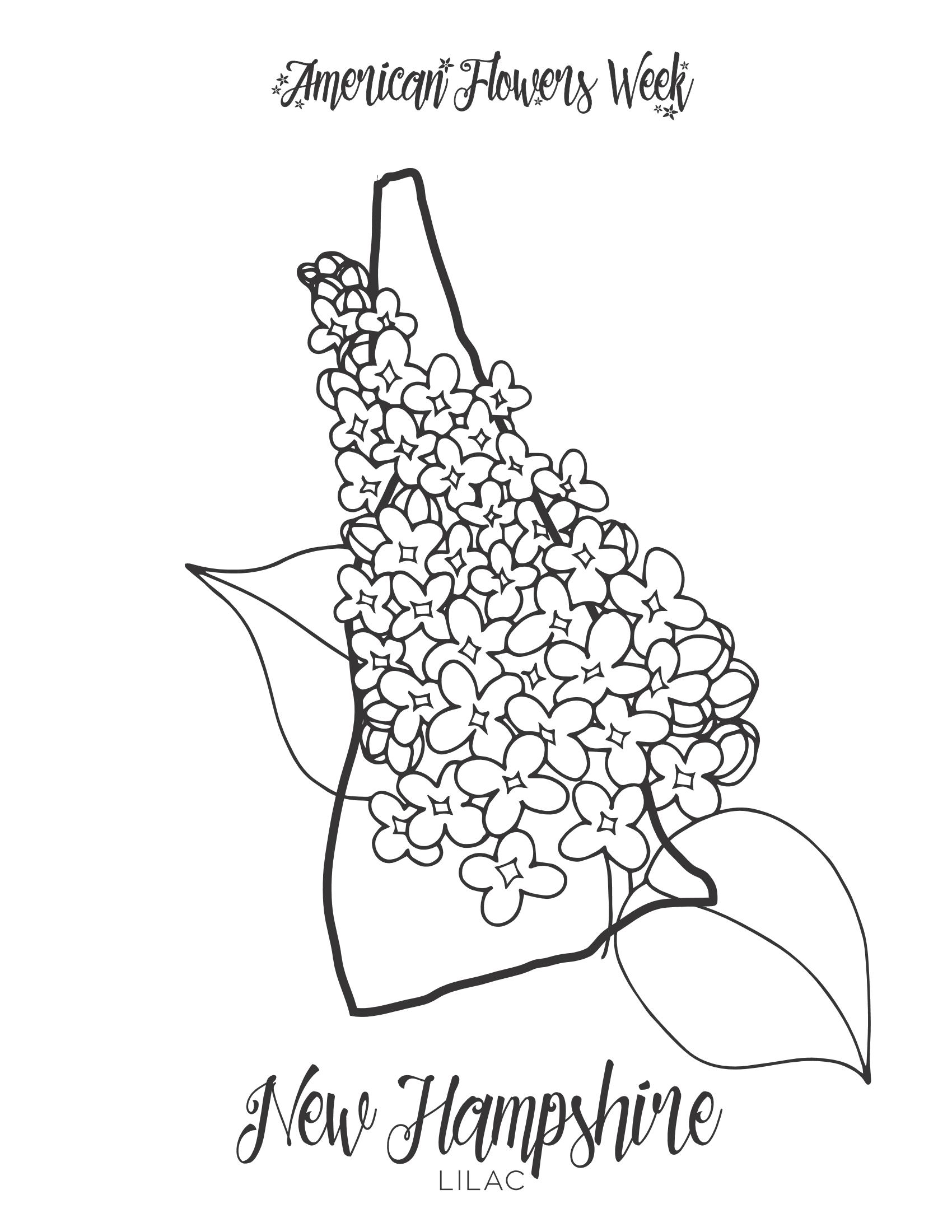 50 State Flowers Free Coloring Pages American Flowers Week