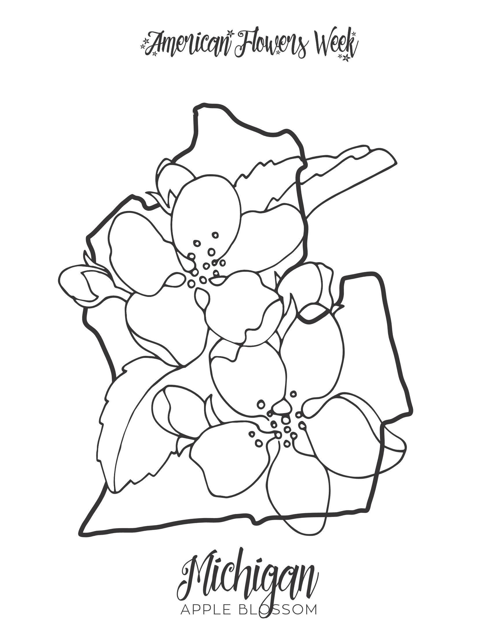 Michigan Apple Blossom PDF