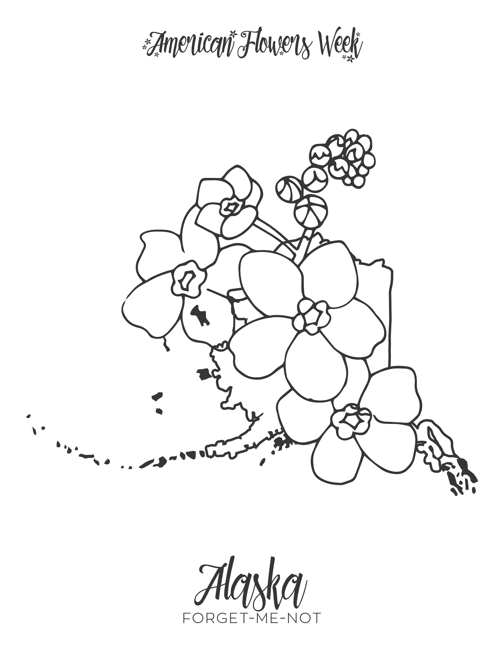 50 state flowers  u2014 free coloring pages