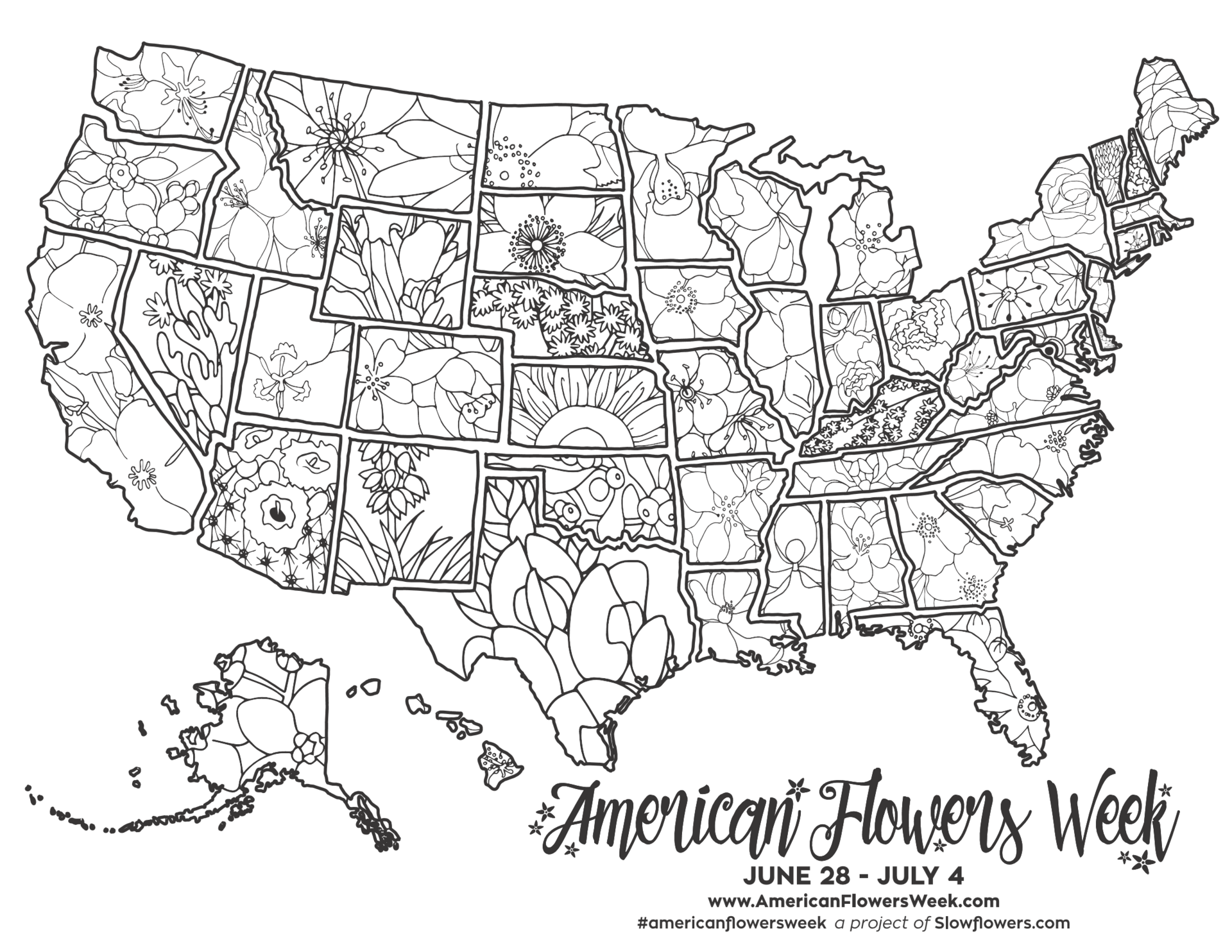 click here to download coloring sheets featuring each state flower